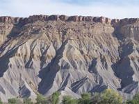 Organic rich shale